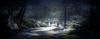 Forest-2 (Poli Maurizio) Tags: sony sonydsch200 disegno art abstract painting sculpture museum gallery virtual artist master famous canvas painter collection drawing impressionism naturalism renaissance expressionism realism baroque sketch garden portrait autumn flower light nature sky spring summer indoor travel water woman yellow blue black white color movement figure macro photo object fine unlimited still life mattepainting fantasy fantastic facebook twitter linkedin pinterest instagram tumblr outdoor atmosferic watercolor technique surrealism digitalart 3dweddingpartyfamilytravelfriendsjapanvacationlondonbeachcaliforniabirthdaytripnycsummernatureitalyfrancemeparisartflowerssanfranciscoeuropechinaflowernewyorkwaterpeoplemusiccameraphone 3daustraliachristmasusaskygermanynewcanadanightcatholidayparkbwdogfoodsnowbabysunsetcitychicagospaintaiwanjulybluetokyoenglandmexicowinterportraitgreenred 3dpolimaurizioartworkredfunindiaarchitecturegardenmacrospringthailandukseattlefestivalconcertcanonhouseberlinhawaiistreetlakezoofloridajunemaywhitevancouverkidstreecloudstorontobarcelonageotaggedhome 3dbwbwdigitalseadaytexasscotlandcarlighthalloweencampingchurchanimalstreeswashingtonrivernikonaprilbostongirlirelandgraffitiamsterdamrocklandscapeblackandwhitecatsnewyorkcitysanromeroadtripurbanhoneymoonocean 3dwatercolorsnewzealandmarchblackmuseumyorkhikingislandmountainsyellowsydneysunhongkongshowgraduationcolorfilmmountainanimallosangelesschoolmoblogphotodogs 3dartdesigndisegnosiciliacalabriabasilicatacampaniamarcheabruzzomoliselaziotoscanaemiliaromagnalombardiavenetofriuliveneziagiuliapiemontevalledaostaliguriatrentinoaltoadigepuglia 3dlandscapepaesaggiolunasolemarenuvolecittàtramontoalbamontagnecollinenebbialuceautomobilearredamentointerniesterninaturamortacieloragazzadonnauomobambinofruttabarca 3dcanigattirinascimentomodelbarocconaturalismomattepaintingfuturismoastrattismocubismosurrealismorealismoiperealismoclassicismorococomanierismoromanticismoimpressionismogiocovirtualepe