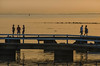 A golden evening at the bathing pier (2) (frankmh) Tags: evening sunset bathingpier landscape hittarp skåne sweden helsingborg people