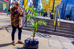 No Man is an Island (Michael Goldrei (microsketch)) Tags: 2018 bag spring england street mai darkness photos plant photographer tree st photography fuji stop series station manchester shadow palmtree palm tram island shopping hawaiian european shade shirt may xseries hawaii fujifilm light paradise fujilovers x100t shadows plants britain 18 x uk green europe manc photo