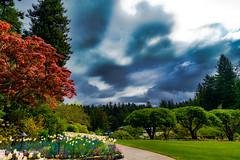 Butchard Gardens Vancouver Island British Colombia Canada-44a (Yasu Torigoe) Tags: