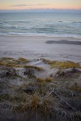 DSC_0352 (Klitferie) Tags: klitferie feriehuse ferienhaüser vedersøklit fjand vesterhusby nørhede vesterhavet nordsee fjorden skoven