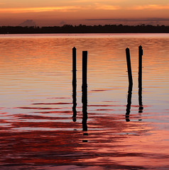 Rosy-fingered dawn appeared. (Jill Bazeley) Tags: rosy fingered dawn sunrise sunset homer piling hurricane damage pier dock intracoastal waterway merritt island florida brevard county indian river lagoon shiny reflection nikon d7000 70300mm