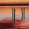Rosy-fingered dawn appeared. (Jill Bazeley) Tags: rosy fingered dawn sunrise sunset homer piling hurricane damage pier dock intracoastal waterway merritt island florida brevard county indian river lagoon shiny reflection nikon d7000 70300mm
