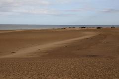 201702130750 - Canaries, Fuerteventura; dunes de Corralejo (Pierrot_B.) Tags: pierrotb canaries fuerteventura lanzarote tenerife lagomera