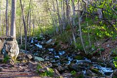 The Iron Furnace on Gap Creek in The Town Of Cumberland Gap TN (mikerhicks) Tags: cumberlandgap cumberlandgapnationalhistoricalpark ewing hiking ironfurnace nationalpark nature sonya6500 unitedstates virginia history outdoors exif:aperture=ƒ80 exif:lens=epz18105mmf4goss geo:location=cumberlandgap exif:make=sony camera:model=ilce6500 geo:lat=36601395 exif:focallength=18mm geo:country=unitedstates geo:city=ewing exif:isospeed=200 geo:lon=83668151666667 camera:make=sony geo:state=virginia exif:model=ilce6500