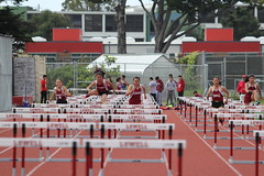 IMG_8265 (susanw210) Tags: track running trackandfield teamwork atheletes students highschool team jumping hurdles lowell cardinals highschoolsports