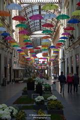 Galleria Mazzini (manuela albanese) Tags: euroflora2018 manuela albanese photo genova genoa sunday morning