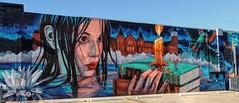 Story Board (clarkcg photography) Tags: wall art wallart tahlequah nsu college cherokee lotus riverhawk campus candle illumination books water calm woman dark sky rockets liftoff wednesdaywalls coffreetheme