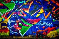 _DSC2210_DR (Pascal Rey Photographies) Tags: sorrygraffiti romanssurisére auvergnerhônealpes rhônealpes graffitis graffs graffik graffiti tags popart pop fresquesmurales fresquesurbaines peinturesmurales peinturesurbaines walls wallpaintings walldrawings murs murales muros murale artmural arturbain artgraphique artcontemporain artabstrait urbanart urbanphotography urbaines urbain urbex pascalreyphotographies photographiecontemporaine photos photographie photography photograffik photographienumérique photographieurbaine photographiedigitale pascalrey nikon d700 aurora aurorahdr