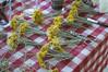 Ψίνθος (Psinthos.Net) Tags: ψίνθοσ psinthos mayday πρωτομαγιά μάιοσ μάησ άνοιξη may spring afternoon απόγευμα απόγευμαάνοιξησ ανοιξιάτικοαπόγευμα άγριαλουλούδια λουλούδια αγριολούλουδα κίτριναλουλούδια κιτρινάκια yellowflowers wildflowers flowers γύρη pollen