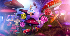 "Chase the Cheshire ""contest entry"" (meriluu17) Tags: alice aliceinwonderland wonderland fantasy cat cheshire mushrooms shrooms rose roses tale fairytale surreal pastel light lights people doll girl chase catch enchantment"