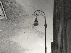 Upside down (VauGio) Tags: lampione torino turin pioggia rain streetlamp lamp strada street huawei p10 leica bianconero biancoenero blackwhite blackandwhite dianaross