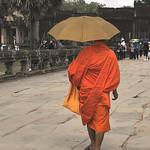 Monk with umbrella thumbnail