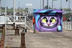 Cheshire Cat (just.Luc) Tags: streetart urbanart graffiti grafitti cat chat kat katze aliceinwonderland bacalan bordeaux gironde nouvelleaquitaine france frankrijk frankreich francia frança europa europe