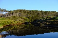 North Head Beach Lagoon (335semi) Tags: australia nsw nationalpark np national park murramarang northhead camping lagoon fuji fujixt2 reflections