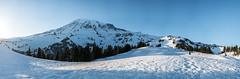Mountain panorama (Laura Jacobsen) Tags: camping mtrainier mtrainiernationalpark nationalparks paradise rainier snow washington
