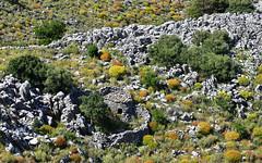 Mani 15 (orientalizing) Tags: desktop easternmani featured greece mani monipanayiakournou rustic sheepfold southernpeloponnese