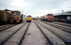3460 TA1815 DB1587 Katanning 17 Febuary 1983 (RailWA) Tags: railwa philmelling westrail 1983 ta1815 db1587 katanning