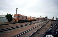 3461 A1505 freight Katanning 17 February 1983 (RailWA) Tags: railwa philmelling westrail 1983 a1505 freight katanning