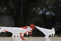 Dilophosaurus / scavenger (Jose_Herrera_B) Tags: origami origamidesign origamiart origamisculpture origamimodel origamilatinoamericano paperfolding papiroflexia paperart paper plasticity joseherrera joseherreraorigami dilophosaurus dilophosaurio wetfold art