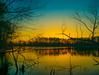 Cool Night (Noel Alvarez1) Tags: landscape teal orange panasonic lumix g7 nature lake tress skies night afternoon new jersey south nj usa country