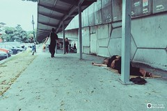 // Homeless // (tomsweisiong) Tags: flickr yahoo 2018 malaysia kualalumpur kuala life human candid color colour concrete homeless street streetphotography
