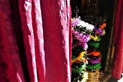 devotion II (*F~) Tags: lisboa portugal june procession celebration santoantóniodelisboa public ceremony popular saints sinners faith devotion colors colorful city urban homeland
