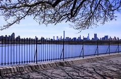 Central Park Saturday #7 (Keith Michael NYC (4 Million+ Views)) Tags: centralpark manhattan newyorkcity newyork ny nyc