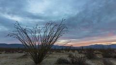 Anza-Borrego Desert Sunset, Milky Way, and Sunrise Timelapse (slworking2) Tags: california desert sky clouds night dusk dawn anzaborrego anzaborregodesert san diego borrego springs texas dip timelapse time lapse milky way