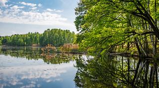 Teichlandschaft bei Daubitz