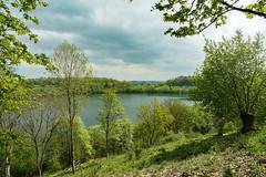 Weinfelder Maar (clemensgilles) Tags: frühling spring lake see maar vulkaneifel deutschland eifel germany