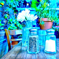 ( You always see them together ) (Wandering Dom) Tags: salt pepper table flowers urban garden plants nature humans outdoor earth multiverse being nothingness existence time life reality dream roam wandering