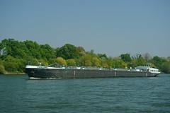 TMS MALMÖ (Lutz Blohm) Tags: tmsmalmö tankschiff rhein rheinschifffahrt binnenschifffahrt binnenschiffe gütermotorschiff fluskilometer399 sonyalpha7aiii fe70300goss