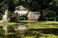 DSC06613 (olliethewino) Tags: bath priorpark reflection