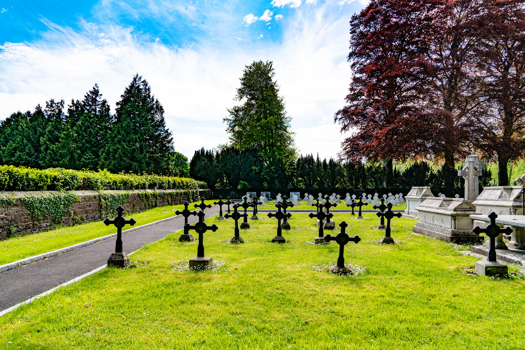 ST. PATRICK'S COLLEGE CEMETERY IN MAYNOOTH [SONY A7RIII IN FULL-FRAME MODE]-139563