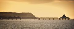Usedom (a.penny) Tags: usedom heringsdorf baltic sea ostsee seebrücke pier apenny nikon d7100 panorama silhouette explored