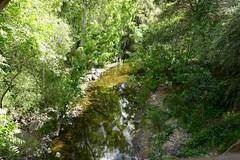 San Francisquito creek b/w Palo Alto & Menlo Park (ali eminov) Tags: paloalto menlopark california creeks sanfrancisquitocreek