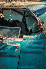 How To Live My Life (Wayne Stadler Photography) Tags: abandoned preserved junkyard georgia classic automotive derelict overgrown vehiclesrust rusty retro vintage oldcarcity rustographer rustography white