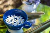 Spring Zen (daynawines) Tags: stilllife flowers flower bokeh bamboo teacup reflection color prime