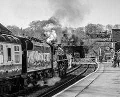 Grosmont Five (std70040) Tags: black5 blackfive northyorkshiremoorsrailway nymr steamlocomotive steamengine steamtrain train railway locomotive