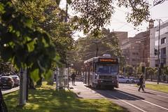 La Trobe Street (andrewsurgenor) Tags: transit transport publictransport electric streetscenes citytransport city urban trams streetcars trolleys melbourne victoria australia