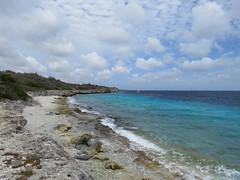 Bonaire 2018 (Valerie Hukalo) Tags: bonaire antilles caraïbes paysbas nature valériehukalo hukalo