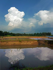Storm over Pond (SierraSunrise) Tags: isaan esarn thailand phonphisai nongkhai weather storm clouds evening pond reflections