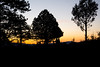 Waiting for Sunrise (hippyczich) Tags: sunrise silhouette bryce canyon utah america