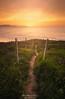 Camino hacia el Mar (Mimadeo) Tags: path sea sunset sun outdoor coast pathway trail footpath basquecountry paisvasco euskadi landscape nobody sunrise grass beautiful idyllic dreamy tourism sopela sopelana bizkaia vizcaya