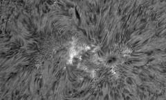 AR2760 Q-L DS  D153F1200 on 2018-04-22_PST_10-30-10-0471_L_pipp_g4_ap2056_1 (Photon_chaser) Tags: sun sunspots solar sunspot sunsunspots stack zwo zwoasi174mmcamera lunt ls50f 110mmbaaderderf 174mm alpha achromat asi andover astro
