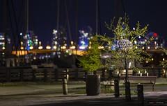Lonely Planet (Clayton Perry Photoworks) Tags: vancouver bc canada spring explorebc explorecanada skyline bokeh night lights falsecreek