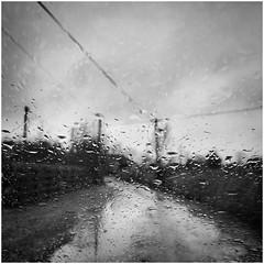 Here comes the rain again (Julie (thanks for 9 million views)) Tags: bw monochrome iphonese 2018onephotoeachday squareformat ireland irish wexford raining windscreen raindrops spring weather htt telegraphtuesday