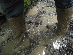 Deep mud with my lechameau (Felix Boots) Tags: mud boots rainwear le chameau deep squelch wellies stuck
