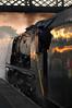 MRC 67978 (kgvuk) Tags: midlandrailwaybutterley midlandrailwaycentre railways trains steamtrain locomotive steamlocomotive steamengine railwaystation swanwickjunctionstation duchessofsutherland 46233 462 princesscoronation duchess princessmargaretrose 46203 princessroyalclass